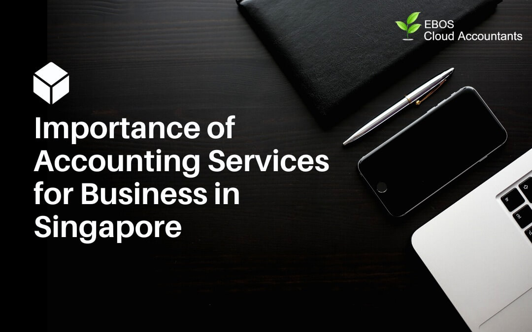 Importance of Accounting Services for Business in Singapore