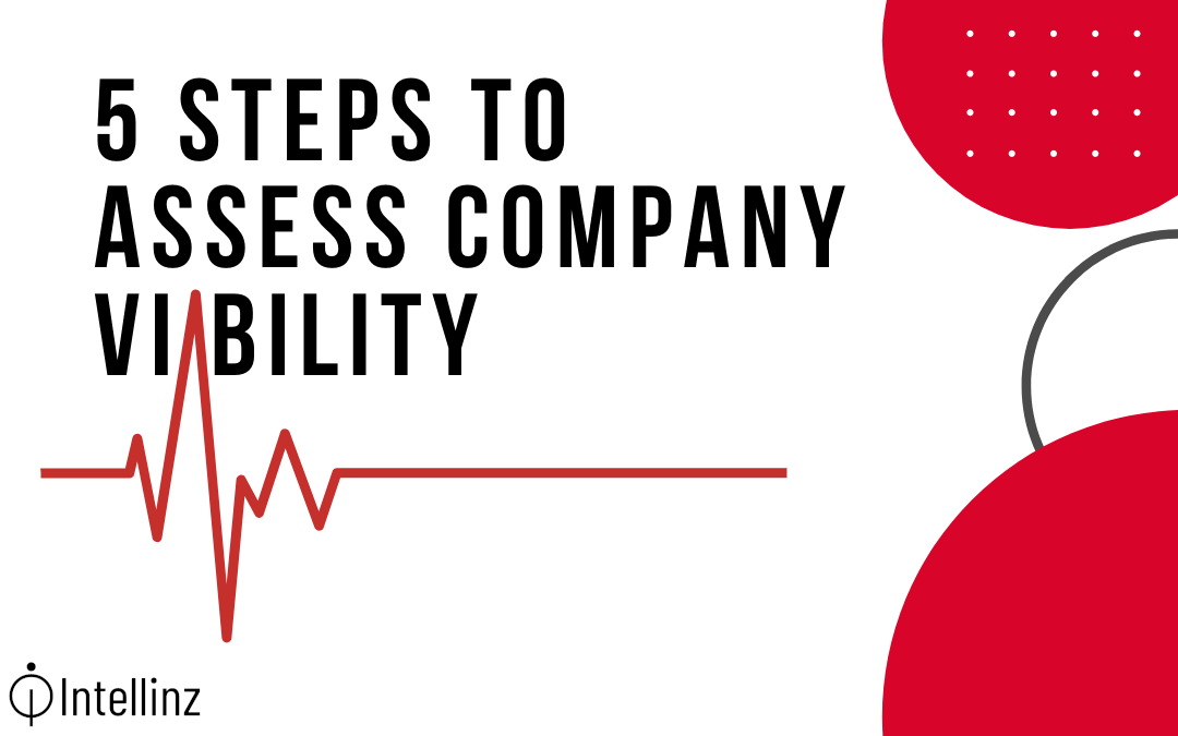 5 Steps to Assess Company Viability